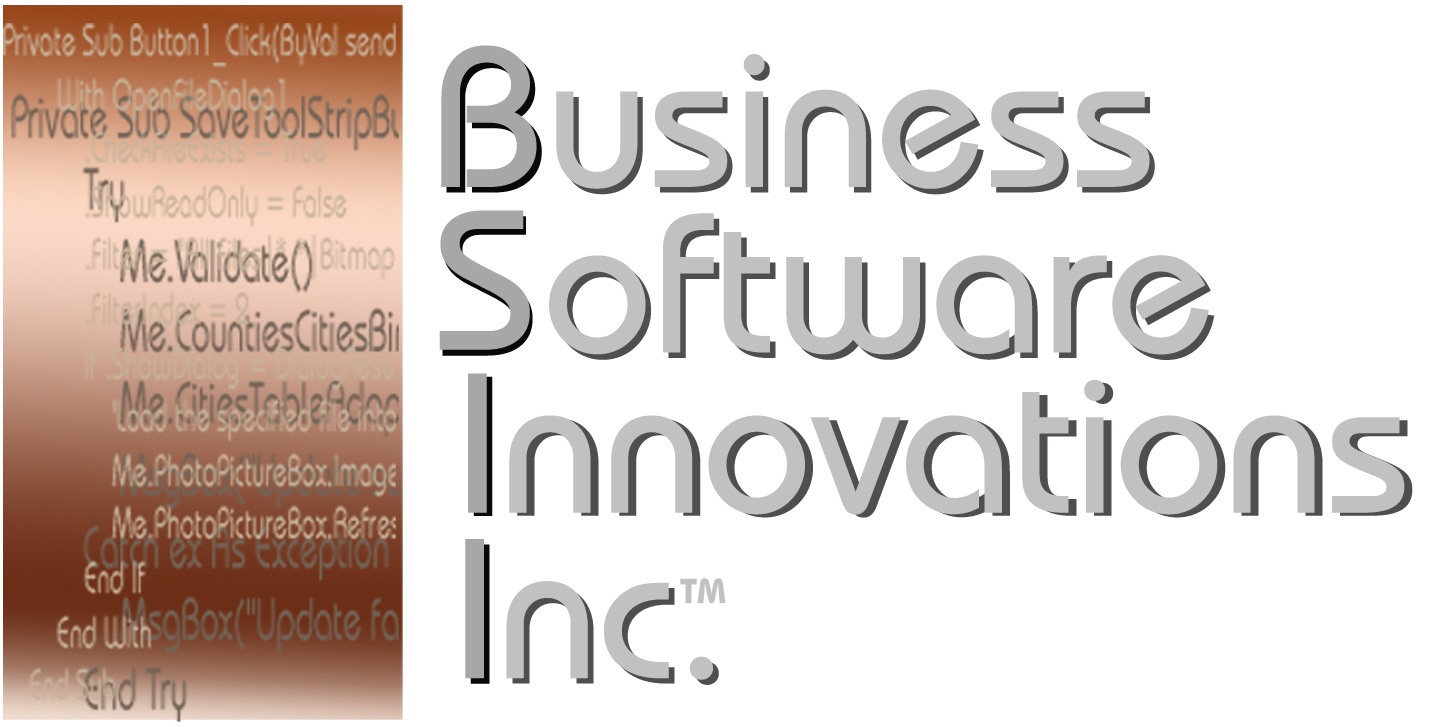 Business Software Innovations Inc.